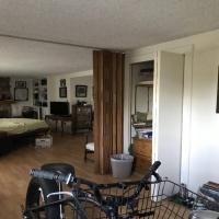 household-154699860212.jpg
