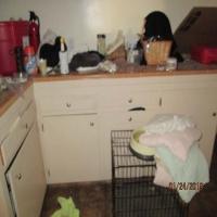 household-155174753610.jpg