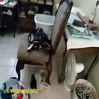 household-15640170067.jpg